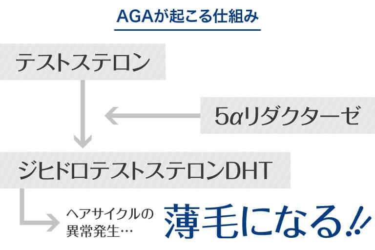 水戸市のAGAクリニックによるAGA・薄毛治療の原因の解説
